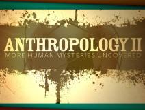 Anthropology II