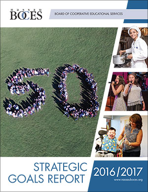 2016-2017 Strategic Goals Report pdf