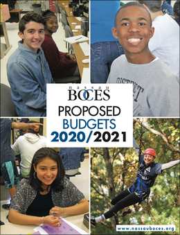 2020-2021 Proposed Budgets