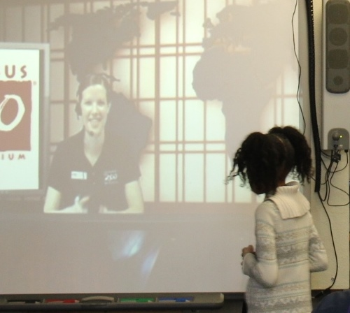 Girl Watching Video Conference