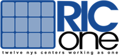 RIC One website