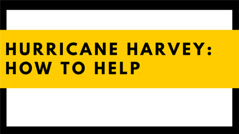 Hurricane Harvey: How to help
