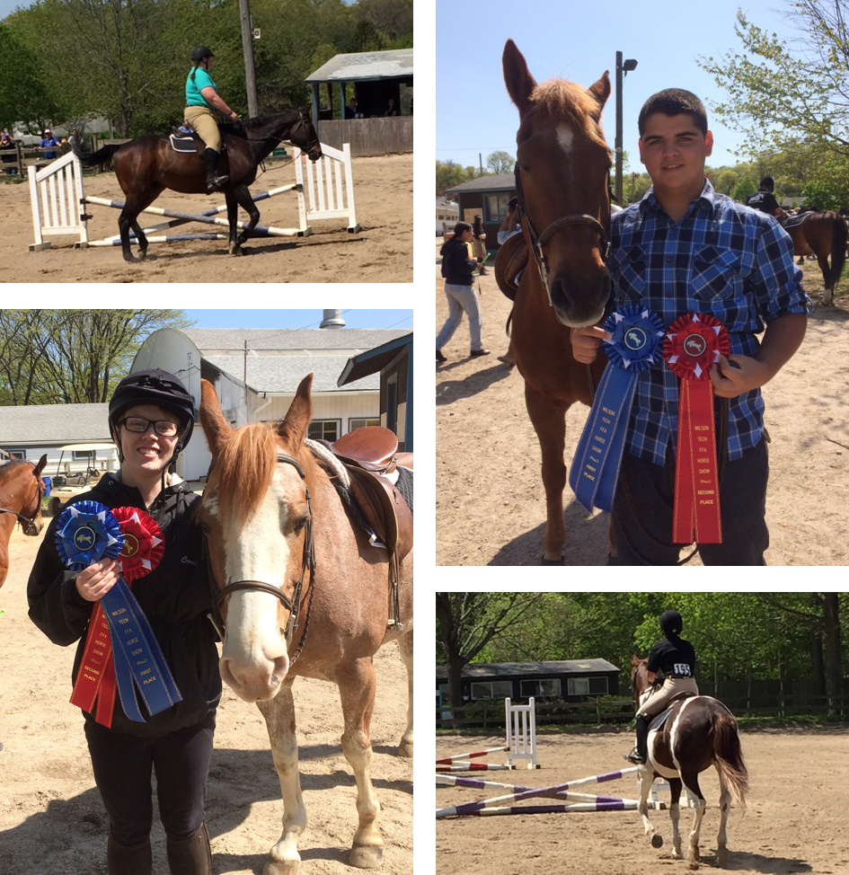 Barry Tech 2016 Horse Show winners
